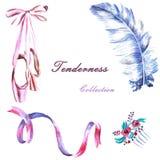 Σύνολο χρωματισμένης χέρι κορδέλλας watercolor, φτερό, pointes, hair-pin απεικόνιση αποθεμάτων