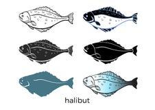 Σύνολο ψαριών θάλασσας στο άσπρο υπόβαθρο ιππόγλωσσος Διανυσματική μορφή ελεύθερη απεικόνιση δικαιώματος