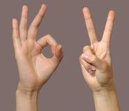 σύνολο 2 χειρονομίας Στοκ φωτογραφία με δικαίωμα ελεύθερης χρήσης