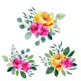Σύνολο floral ρυθμίσεων watercolor Συλλογή των φυσικών συρμένων χέρι τυπωμένων υλών με τα λουλούδια και τα φύλλα Στοκ εικόνες με δικαίωμα ελεύθερης χρήσης
