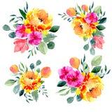Σύνολο floral ρυθμίσεων watercolor Συλλογή των φυσικών συρμένων χέρι τυπωμένων υλών με τα λουλούδια και τα φύλλα Στοκ Φωτογραφίες