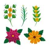 Σύνολο floral φυσικής διακόσμησης διακοσμήσεων φύλλων λουλουδιών Στοκ φωτογραφία με δικαίωμα ελεύθερης χρήσης