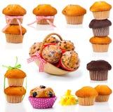 Σύνολο muffins Στοκ Εικόνα