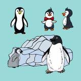 Σύνολο penguins των διαφορετικών ειδών, απεικόνιση μιας οικογένειας των θαλασσοπουλιών penguins σε ένα μπλε υπόβαθρο ελεύθερη απεικόνιση δικαιώματος