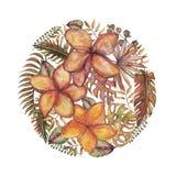 Σύνολο Watercolor εκλεκτής ποιότητας floral τροπικών φυσικών στοιχείων Εξωτικοί λουλούδια, κλαδίσκοι και φύλλα Βοτανικός φωτεινός διανυσματική απεικόνιση