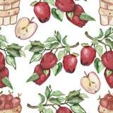 Σύνολο Watercolor ενός στοιχείο-κλάδου με τα κόκκινα μήλα, καλάθι με τα μήλα, δέντρο της Apple, ανθοδέσμη των ανθίζοντας κλάδων τ απεικόνιση αποθεμάτων