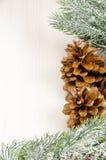 Σύνορα δέντρων του FIR Χριστουγέννων με τους κώνους στοκ φωτογραφία με δικαίωμα ελεύθερης χρήσης