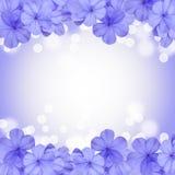 Σύνορα ή υπόβαθρο με το μπλε λουλούδι Στοκ Εικόνα