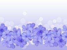 Σύνορα ή υπόβαθρο με το μπλε λουλούδι Στοκ εικόνα με δικαίωμα ελεύθερης χρήσης