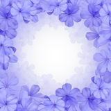 Σύνορα ή υπόβαθρο με το μπλε λουλούδι Στοκ Εικόνες