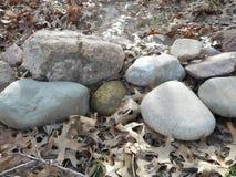 Σύνορα βράχου που περιβάλλονται από τα φύλλα Στοκ φωτογραφία με δικαίωμα ελεύθερης χρήσης