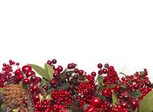 Σύνορα μούρων Χριστουγέννων Στοκ φωτογραφία με δικαίωμα ελεύθερης χρήσης