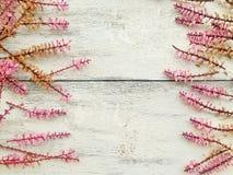 Σύνορα λουλουδιών άνοιξη στο ξύλινο υπόβαθρο στοκ φωτογραφία με δικαίωμα ελεύθερης χρήσης
