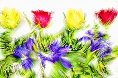 Σύνορα πλαισίων λουλουδιών ελεύθερη απεικόνιση δικαιώματος