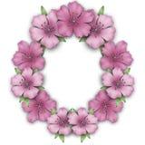 Σύνορα πλαισίων λουλουδιών Υπόβαθρο αζαλεών ανθοδεσμών Στοκ Εικόνες