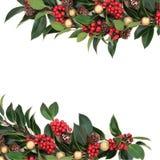 Σύνορα της Holly Χριστουγέννων Στοκ Φωτογραφίες