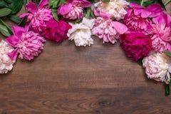 Σύνορα των peonies σε ένα ξύλινο υπόβαθρο floral απεικόνιση σχεδίου καρτών ανασκόπησης φόντου Ρόδινα και πορφυρά λουλούδια άνοιξη Στοκ εικόνες με δικαίωμα ελεύθερης χρήσης