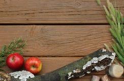 Σύνορα φθινοπώρου ή πτώσης/υπόβαθρο με τα μήλα και Cattails Στοκ εικόνες με δικαίωμα ελεύθερης χρήσης