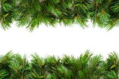 Σύνορα χριστουγεννιάτικων δέντρων Στοκ εικόνες με δικαίωμα ελεύθερης χρήσης