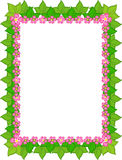 σύνορα floral απεικόνιση αποθεμάτων