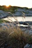 Σύνολα ήλιων πίσω από τους βράχους Στοκ Εικόνα