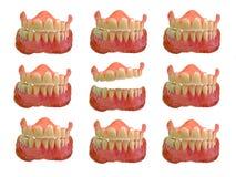 Σύνολα ψεύτικων δοντιών στοκ φωτογραφία με δικαίωμα ελεύθερης χρήσης