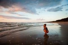 Σύνοδος γιόγκας παραλιών από τη θάλασσα στιλβωτικής ουσίας Στοκ Εικόνα