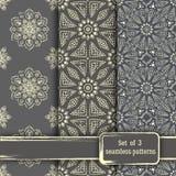Σύνολο άνευ ραφής συρμένων χέρι σχεδίων mandala Εκλεκτής ποιότητας στοιχεία μέσα Στοκ Εικόνες