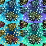 Σύνολο άνευ ραφής σχεδίου angelfish επίσης corel σύρετε το διάνυσμα απεικόνισης Στοκ εικόνες με δικαίωμα ελεύθερης χρήσης