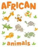 Σύνολο αστείων αφρικανικών ζώων Στοκ εικόνα με δικαίωμα ελεύθερης χρήσης