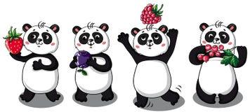 Σύνολο αστείων pandas Στοκ Φωτογραφία