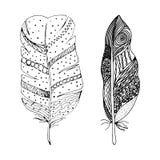 Σύνολο αφηρημένων μαύρων συρμένων χέρι φτερών στο ύφος doodle Διανυσματική απεικόνιση EPS10 Στοκ Εικόνα