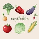 Σύνολο λαχανικών στο εκλεκτής ποιότητας ύφος Στοκ Φωτογραφία