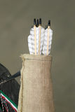 Σύνολο βελών σε έναν ρίγο Στοκ εικόνα με δικαίωμα ελεύθερης χρήσης