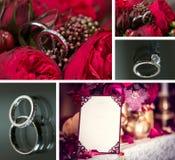 Σύνολο γαμήλιων δαχτυλιδιών Στοκ Εικόνες