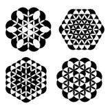 Σύνολο γεωμετρικών floral διακοσμήσεων Στοκ Εικόνες