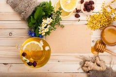 Σύνολο για το βοτανικό τσάι Detox Στοκ Εικόνες