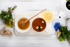 Σύνολο για το βοτανικό τσάι Detox Στοκ Εικόνα