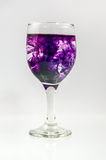 Σύνολο γυαλιού του νερού με το χρώμα μελανιού στοκ φωτογραφίες με δικαίωμα ελεύθερης χρήσης
