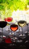 Σύνολο γυαλιών με το κρασί Στοκ Εικόνες