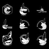 Σύνολο Διανυσματική απεικόνιση λογότυπων σερφ Στοκ Φωτογραφία