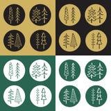 Σύνολο εικονιδίων αυτοκόλλητων ετικεττών δέντρων έλατου κινούμενων σχεδίων Στοκ Εικόνα
