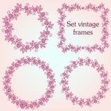 Σύνολο εκλεκτής ποιότητας περίκομψων πλαισίων με τα floral στοιχεία για την πρόσκληση Στοκ φωτογραφίες με δικαίωμα ελεύθερης χρήσης