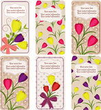 Σύνολο επαγγελματικών καρτών Στοκ Εικόνες