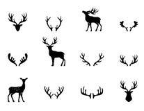 Σύνολο ελαφόκερων, σκιαγραφία, διάνυσμα Στοκ εικόνες με δικαίωμα ελεύθερης χρήσης