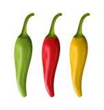 Σύνολο ζωηρόχρωμων πιπεριών τσίλι στο άσπρο υπόβαθρο απεικόνιση αποθεμάτων