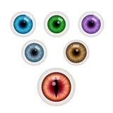 Σύνολο ζωηρόχρωμων σφαιρών ματιών επίσης corel σύρετε το διάνυσμα απεικόνισης ελεύθερη απεικόνιση δικαιώματος