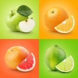 Σύνολο ζωηρόχρωμων φρούτων - μήλο, πορτοκάλι, γκρέιπφρουτ, ασβέστης Στοκ Φωτογραφίες