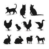 Σύνολο ζώων αγροκτημάτων σημαδιού περιγράμματος Στοκ Εικόνες
