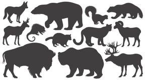 Σύνολο ζώων σκιαγραφιών της Βόρειας Αμερικής Στοκ Εικόνα